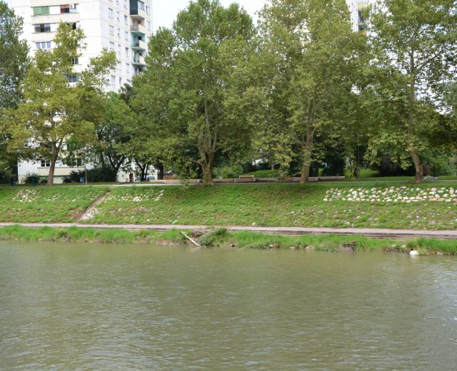 River bank regulation along Savinja, Celje